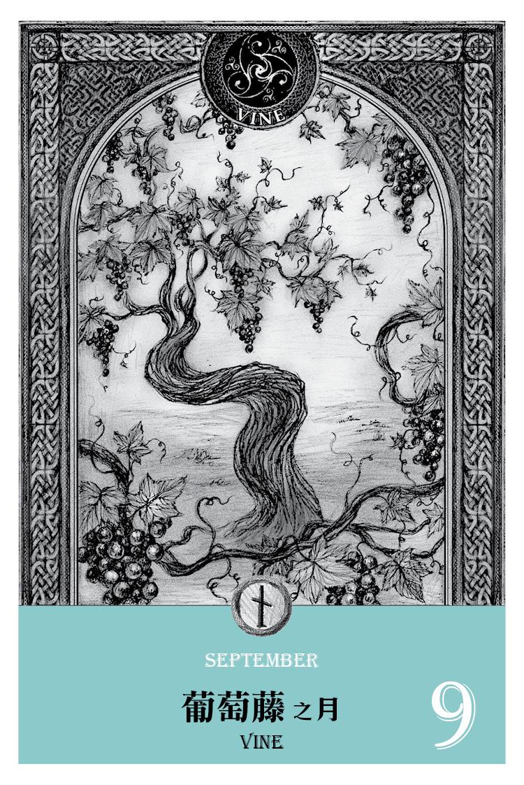【魔法手帳誌】2016年9月‧葡萄藤月 9/2-9/29