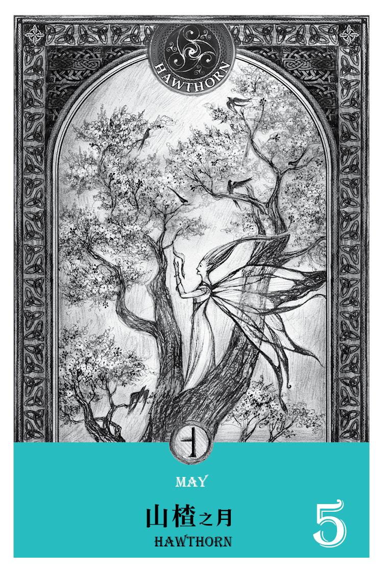 【魔法手帳誌】2016年5月‧山楂月 5/13-6/9