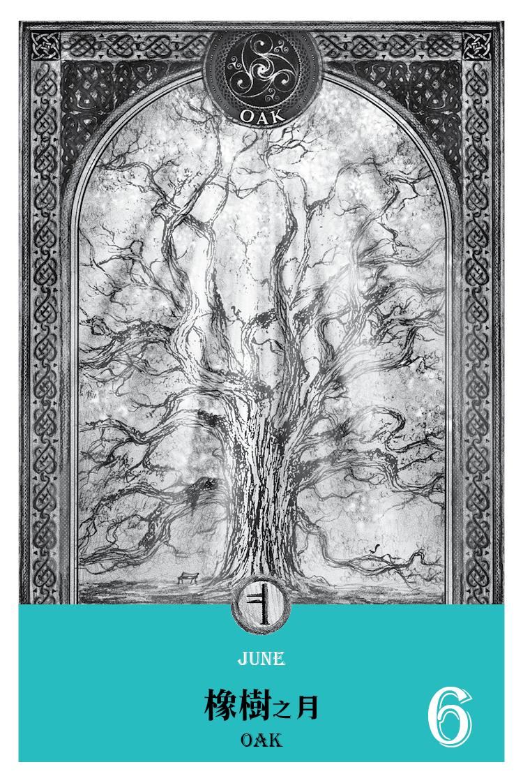 【魔法手帳誌】2016年6月‧橡樹月 6/10-7/7