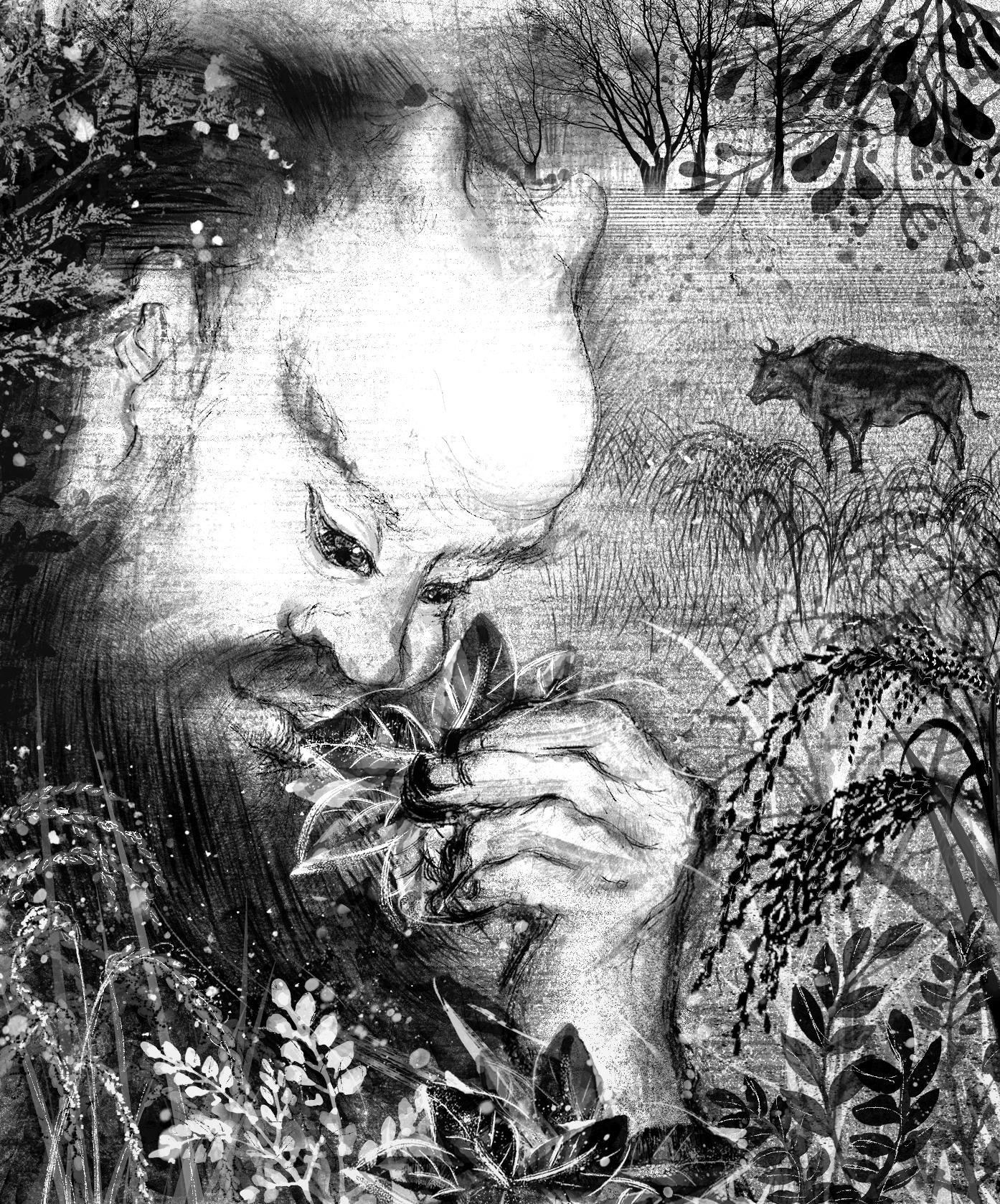 【魔法手帳誌】2019年6月‧掌握植物奧秘的療癒者.神農